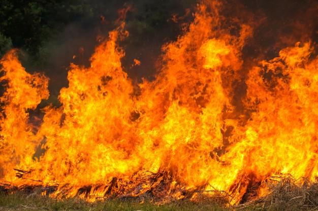 Queimas e queimadas com multas até 10mil euros