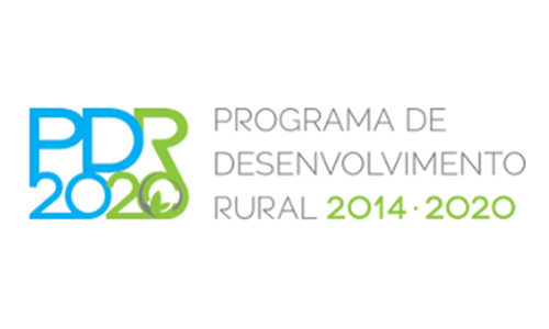 PDR 2020, Vale do Ave,  Candidaturas abertas